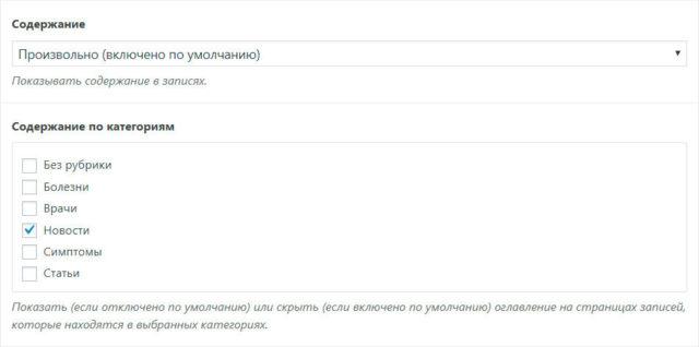 Пример настройки содержания записей в теме WebPoint PRO
