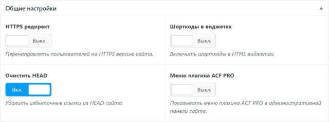 Блок общих настроек темы WebPoint PRO